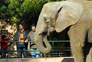 812477444756 vacaciones economicas en familia Vacaciones económicas en familia por Andalucía: Zoológicos y parques temáticos para los niños