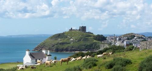 gl2972356 499x235 Gales | Cardiff y turismo rural en Gran Bretaña