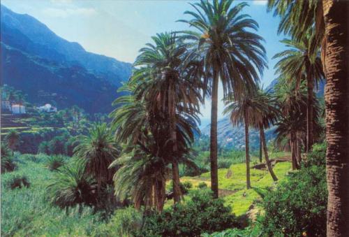 gomera La Gomera, paraíso de las Islas Canarias