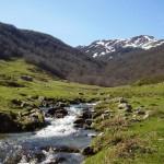 Ofertas escapadas Asturias: Parque de Ponga