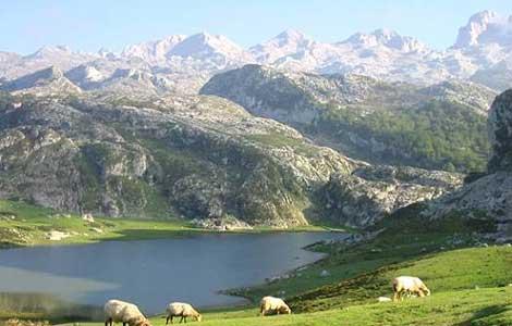 rp_picos_de_europa-escapada-rural-por-el-norte.jpg