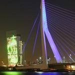 Rotterdam para todos los gustos